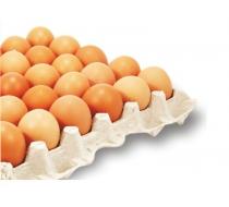 Яйца-M Г.О. Фолио 30 бр /кора